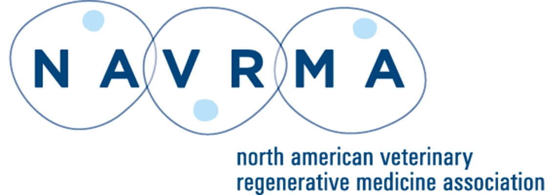Equine World Stem Cell Summit Partners With North American