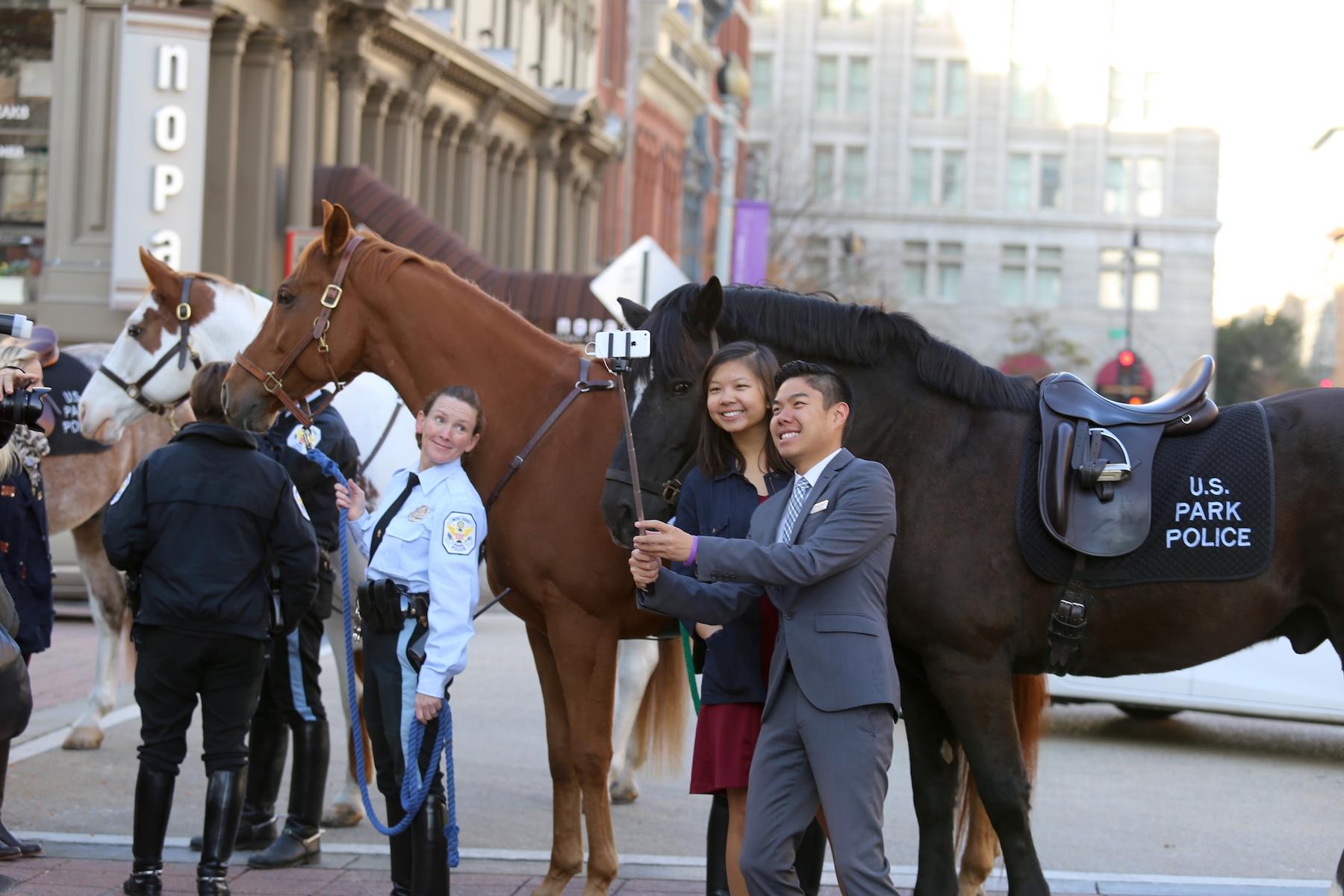 Washington International Horse Show Expands First