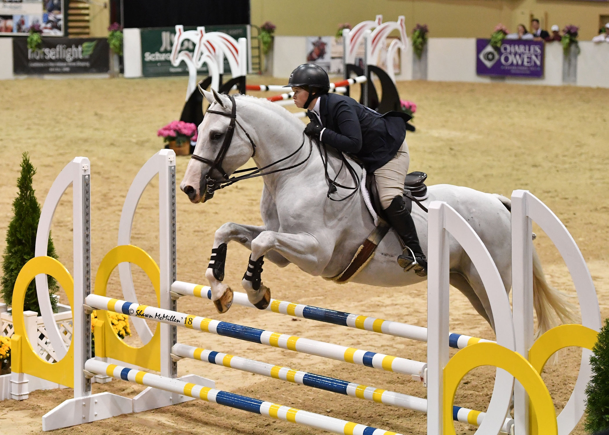Martha Ingram Wins North American Adult Amateur Equitation
