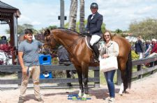 Zippo Z Claims Second Equis Boutique Best Presented Horse Award
