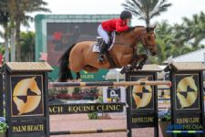 Palm Beach Equine Clinic Services Available On-Site at PBIEC During Holiday & Horses CSI4*
